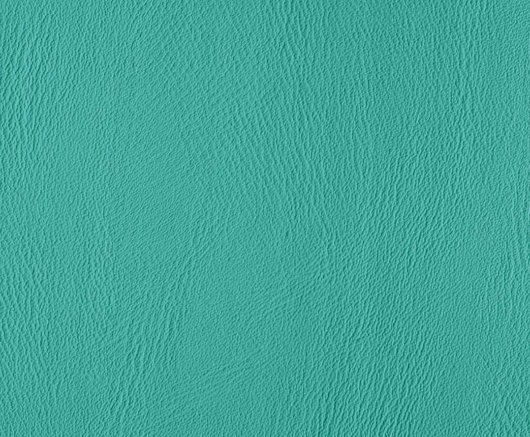 Polsterfarbe: Mint-Light 263