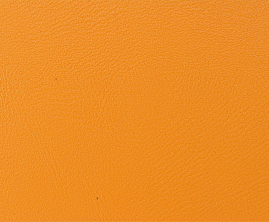 Polsterfarbe: Orange 808